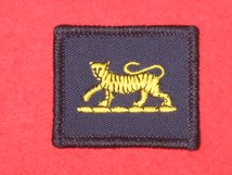 TACTICAL RECOGNITION FLASH BADGE PWRR TIGER TRF BADGE