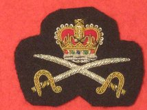 ARMY PHYSICAL TRAINING INSTRUCTOR OFFICERS BERET BADGE