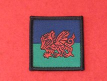 TACTICAL RECOGNITION FLASH BADGE ROYAL WELSH REGIMENT HQ TRF BADGE