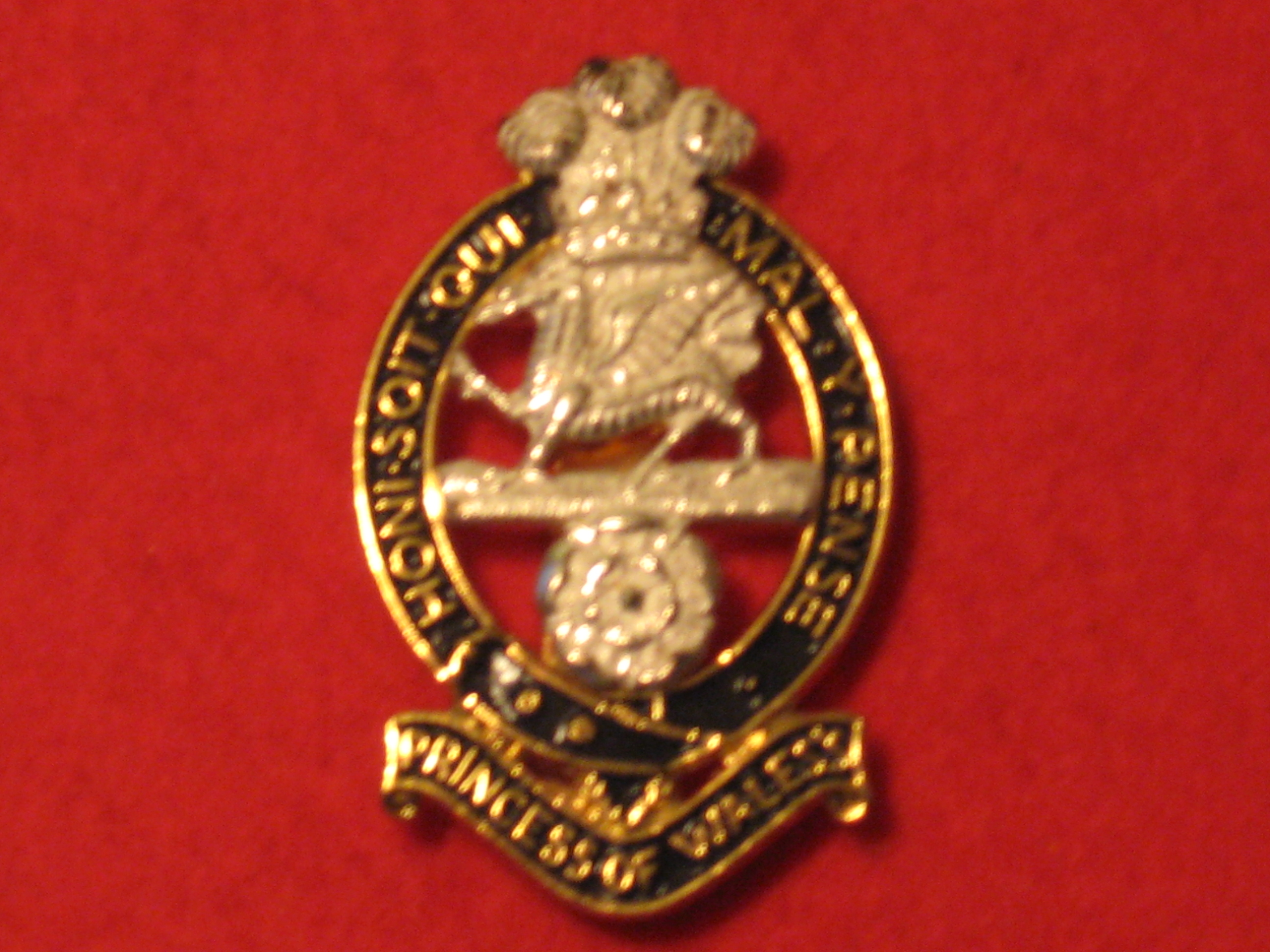 PWRR Blazer Badge Regiment Army Wire Embroidered Military Princess Of Wales