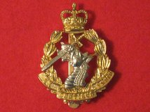 ROYAL ARMY DENTAL CORPS ANODISED CAP BADGE
