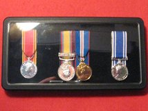 CLEAR LID MEDAL DISPLAY BOX