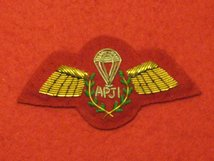 NUMBER 1 DRESS ARMY PARACHUTE JUMP INSTRUCTOR APJI GOLD ON SCARLET BADGE