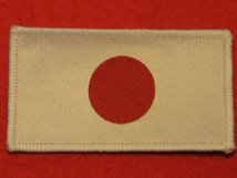 JAPAN JAPANESE FLAG BADGE
