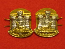 DEVON AND DORSETSHIRE MILITARY COLLAR BADGES
