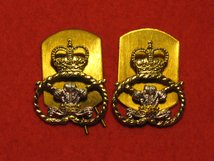 STAFFORDSHIRE REGIMENT COLLAR BADGES