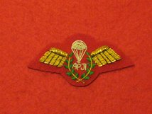 MESS DRESS ARMY PARACHUTE JUMP INSTRUCTOR APJI GOLD ON RED BADGE