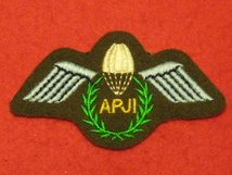 NUMBER 2 DRESS FAD APJI ARMY PARACHUTE JUMP INSTRUCTOR BADGE
