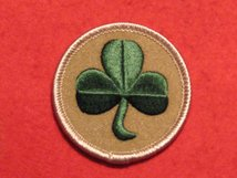 BRITISH ARMY 38TH IRISH BRIGADE FORMATION BADGE