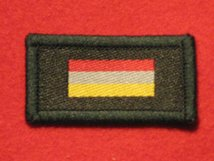 TACTICAL RECOGNITION FLASH BADGE SMALL ARMS SCHOOL CORPS SASC TRF BADGE