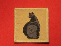 TACTICAL RECOGNITION FLASH BADGE 10TH SIGNAL REGIMENT BLACK BEAR ON BUFF TRF BADGE