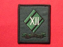 TACTICAL RECOGNITION FLASH BADGE 12TH AIR SUPPORT ROYAL ENGINEER TRF BADGE