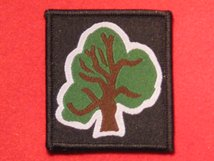 BRITISH ARMY 46TH INFANTRY DIVISION NORTH MIDLANDS FORMATION BADGE TREE BADGE WW2 AND CURRENT