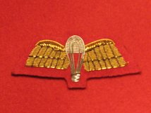 MESS DRESS PARACHUTE WINGS PARA WINGS GOLD ON RED BADGE