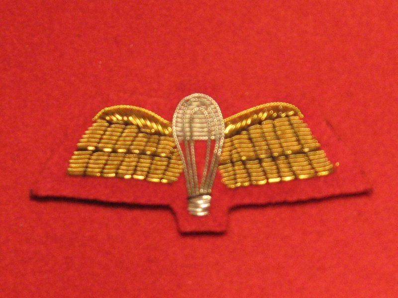 MESS DRESS PARACHUTE WINGS PARA WINGS GOLD ON RED BADGE - Hill