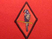BRITISH ARMY 143 WEST MIDLANDS REGIMENT RED PARROT BADGE