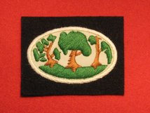 BRITISH ARMY 12 CORPS FORMATION BADGE WW2 THORN TREES BADGE